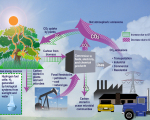 Facts about Renewable Energy Systems